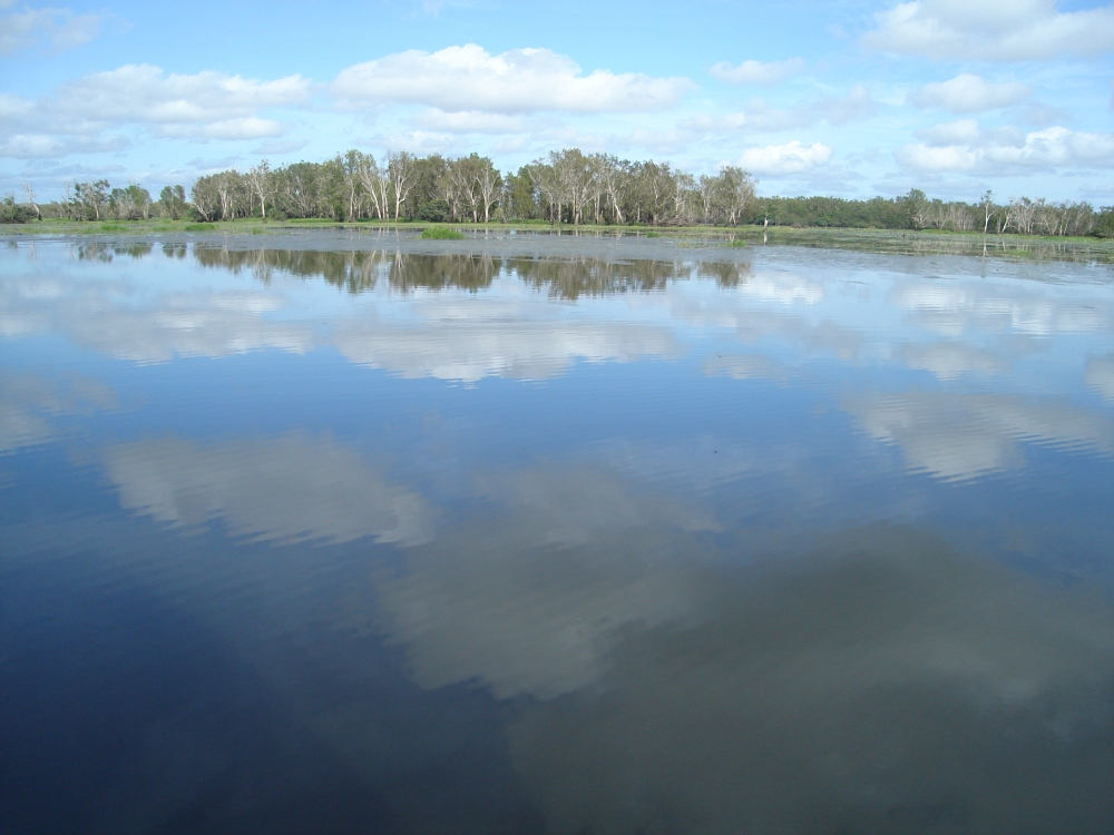 Kakakdu Wetlands